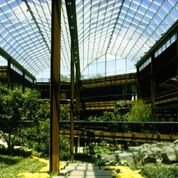 The lush atrium at John Deere Headquarters in Moline, Illinois, allows employs to pass through nature as they circulate through the building.