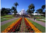 The Conservatory of Flowers in full bloom